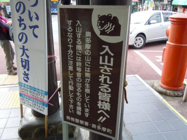 20111009_2_kuma