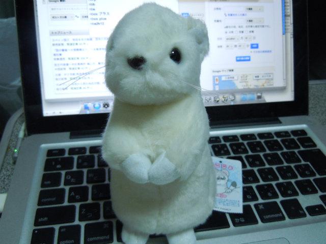 20120718_15_okojyo